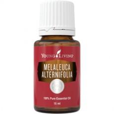 Масло эфирное Tea Tree (Melaleuca Alternifolia) / Чайное дерево